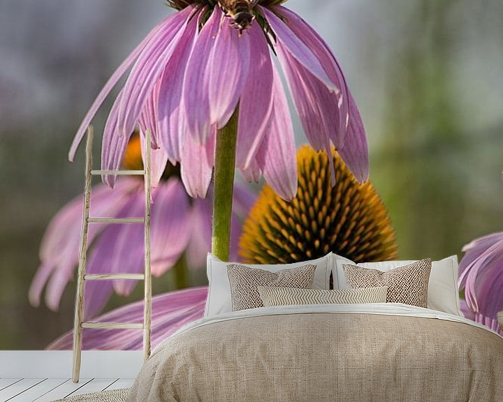 Impression: Bijenbezoek sur Anneke Hooijer