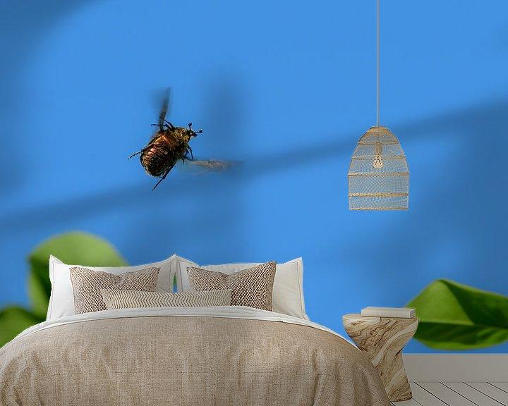 Sfeerimpressie behang: Blije Gouden Tor / Kever van Andrea de Vries
