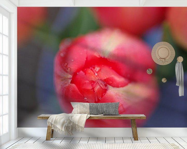 Sfeerimpressie behang: Tulp in de knop van Rob De Jong
