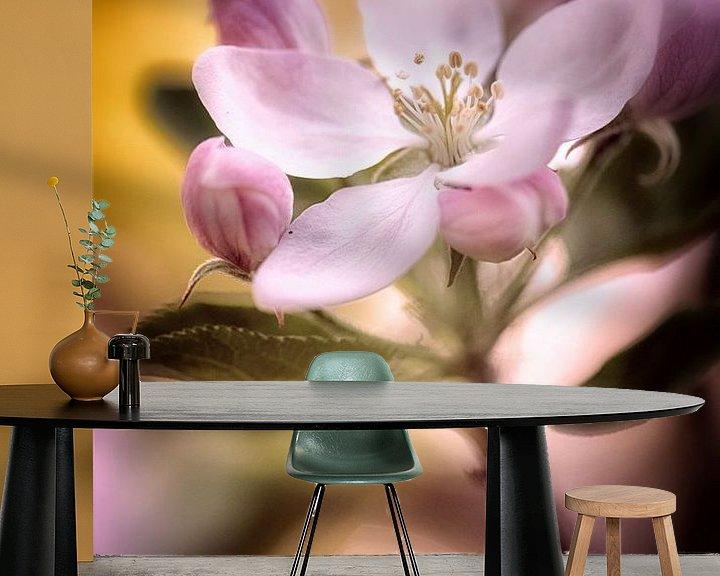 Beispiel fototapete: Apfelblüten im pinkfarbenem Licht von Nicc Koch