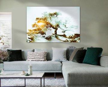 Baum mit strahlender Kraft im Sonnenuntergang von Frank Grässel