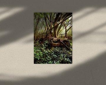 Lost in de Woods (Urban) van Helga fotosvanhelga