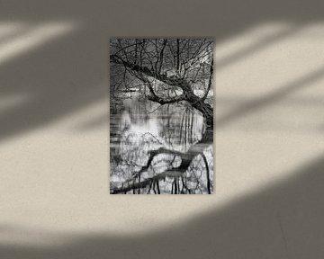 Reflectie von Pieter van Roijen