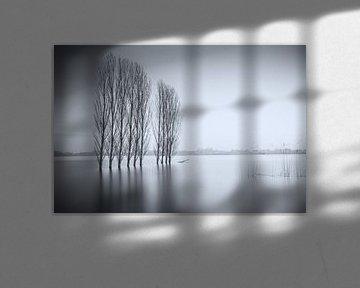 Bomenrij in het water van Jan van der Vlies