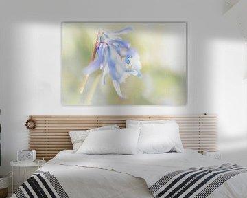 Blaue Waldhyazinthen von Rietje Bulthuis
