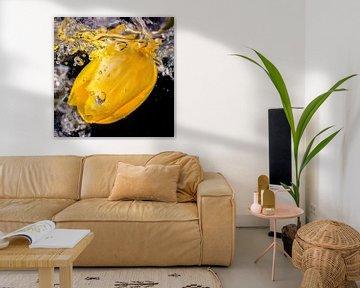 Gele tulp in sprankelend water von Jenco van Zalk