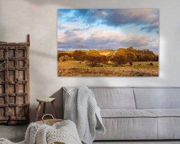 Landscape on the island Moen in Denmark van Rico Ködder