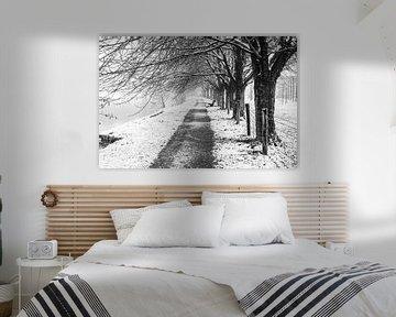 Sneeuw en mist bij het Kromme Rijnpad ter hoogte van de kersenboomgaard bij de Koningslaan, Utrecht