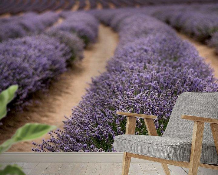 Sfeerimpressie behang: Lavendel landschap van Anne Loman