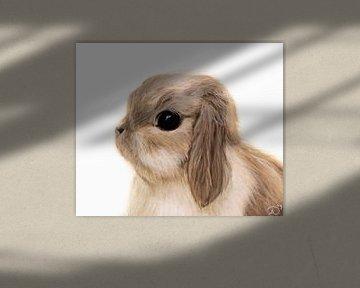 baby konijntje van Samantha Dekker