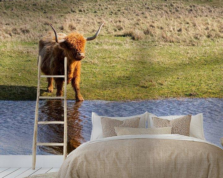 Sfeerimpressie behang: Schotse hooglander... van Bert - Photostreamkatwijk