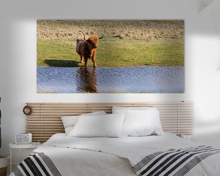 Sfeerimpressie: Schotse hooglander... van Bert - Photostreamkatwijk
