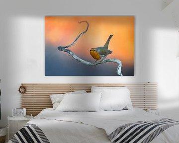 Roodborst (Erithacus rubecula) van AGAMI Photo Agency
