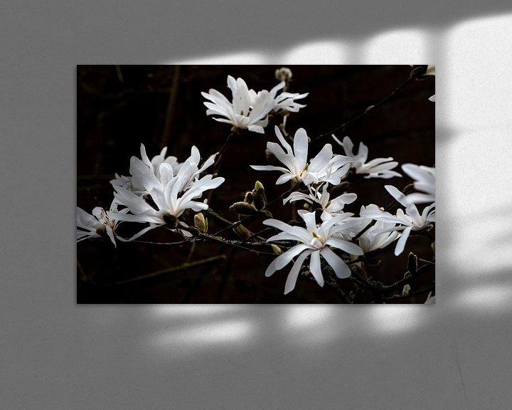 Sfeerimpressie: Magnolia van Ingrid Aanen