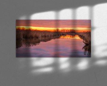 Sunset Oostvaardersplassen van Michiel Leegerstee