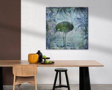 Vogel Strauss von Andrea Haase
