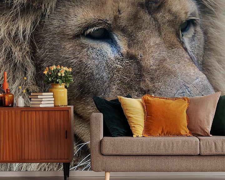 Beispiel fototapete: Der Löwe von Anjo ten Kate