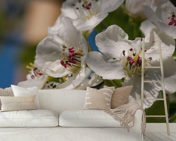 Beispiel fototapete: Frühlingsblüte von Erik Reijnders