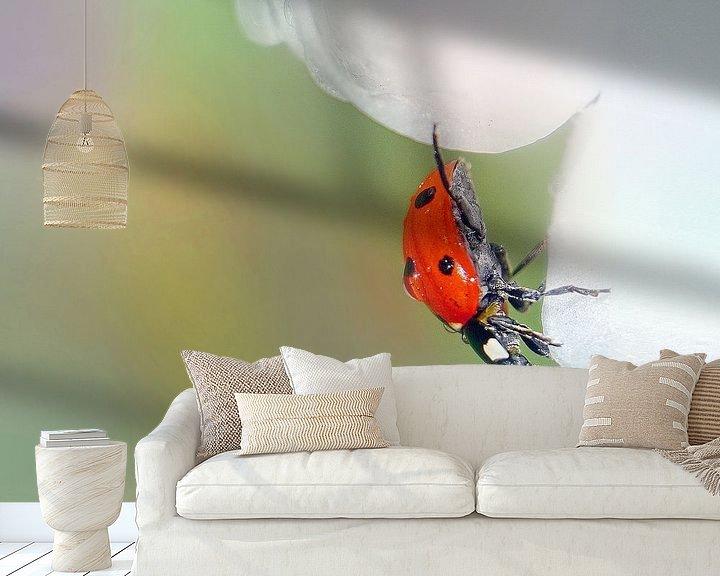Sfeerimpressie behang: Lieveheersbeestje van Ad Spruijt