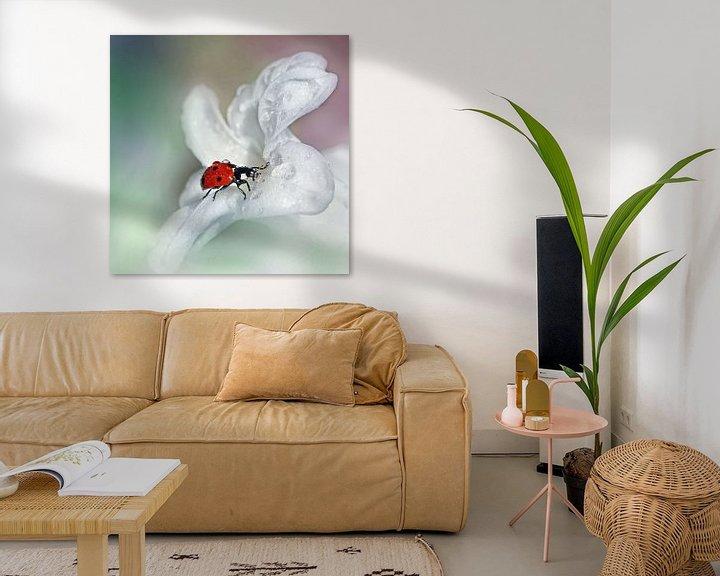 Sfeerimpressie: Lieveheersbeestje van Ad Spruijt