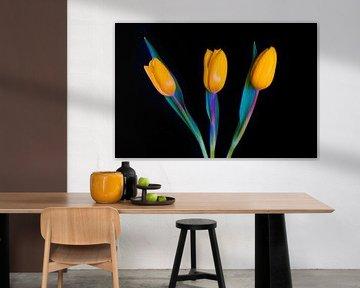 Hollandse gele tulpen von Celina Dorrestein