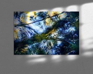 Kleine Äste im Licht abstrakt von Nicc Koch
