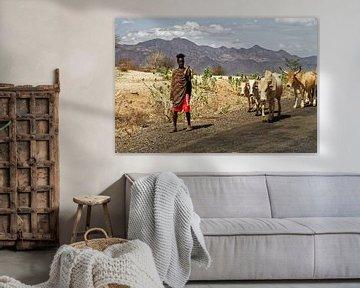 herder met koeien