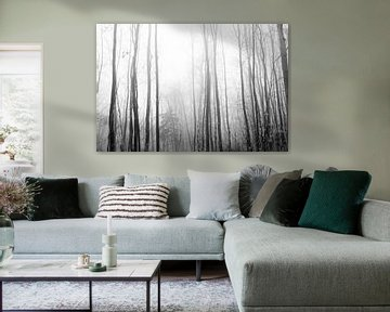 Wald in Schwarz und Weiß von Lavieren Photography