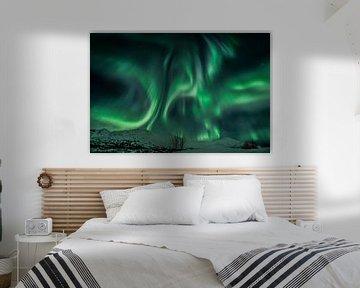 Northern Lights (Aurora Borealis) - Lady Aurora dancing van Martin Boshuisen - More ART In Nature Photography
