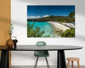Curacao, Grote Knip van Keesnan Dogger Fotografie
