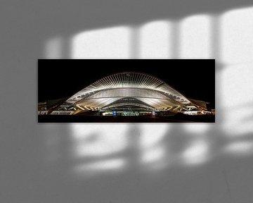 Panorama by Night van de entree van Station in Luik von Photography by Karim