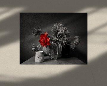Stil Tulpe von Erik Reijnders