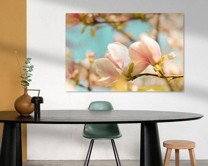 Beispiel: Magnolie Frühlingsblüten 4 von Joske Kempink