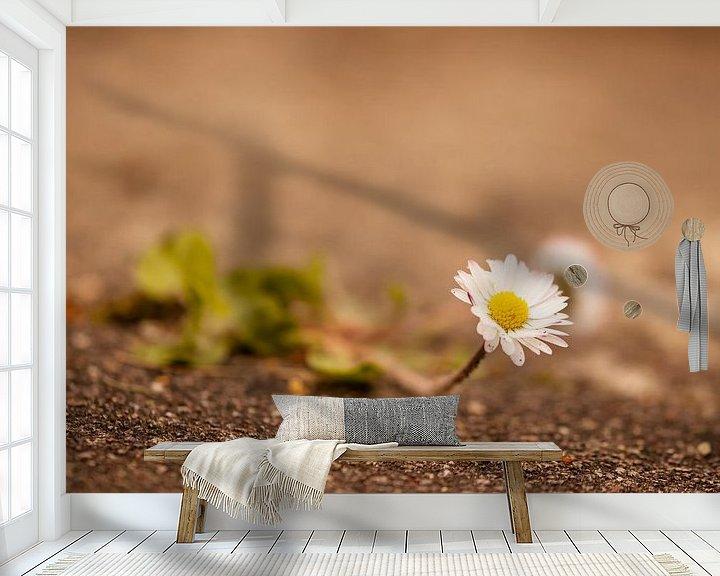 Beispiel fototapete: Gänseblume von Alena Holtz