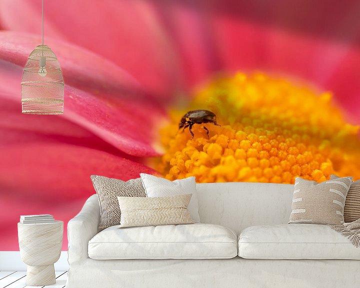 Beispiel fototapete: Käfer von Alena Holtz