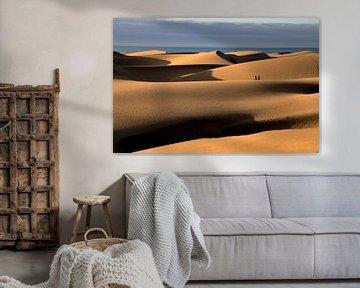 Wandeling in de woestijn van Jaap Spaans
