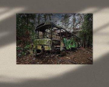 Lost Place - Jungle Bus von Linda Lu