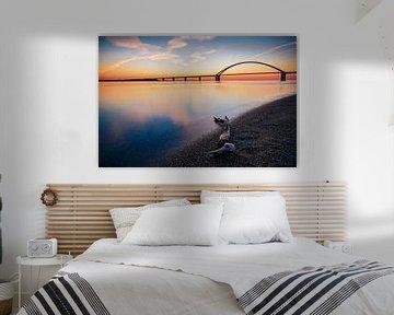 Fehmarnsundbrücke van Alena Holtz