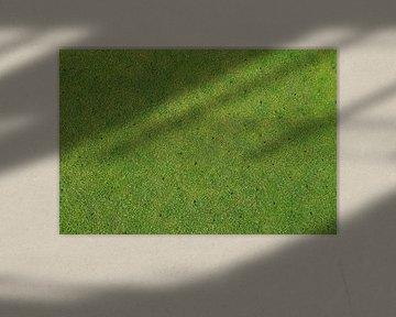 Golf green van Jarretera Photos