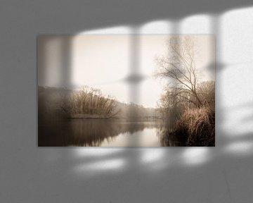Cranenweyer von Maurice Cobben