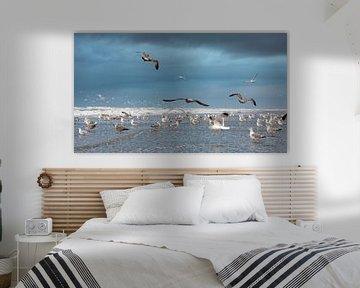 Seagulls sur Jeanette van Starkenburg