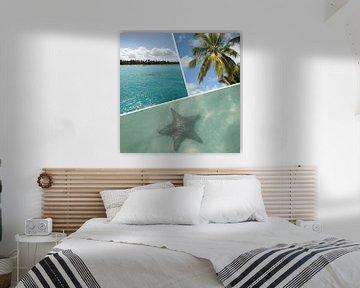 Isla Saona Karibik Fotocollage