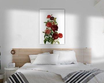 Vintage Rote Rosen von Uta Naumann