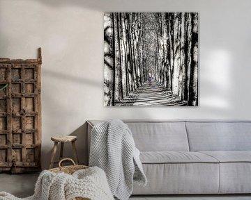 Fietser in kleur op een pad in Gaasterland in zwart/wit von Harrie Muis