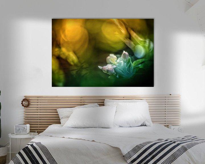 Beispiel: Farbenfrohe Apfelblüten von Nicc Koch