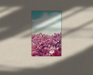 Die Farben des Frühlings von Dirk Wüstenhagen