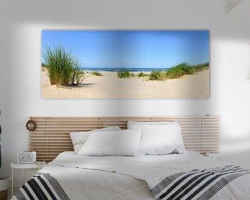 Duinen aan het strand met helmgras tijdens een mooie zomerdag aan het Noordzeestrand van Sjoerd van der Wal