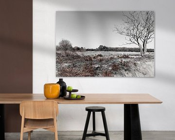 Mantingerzand in zwart-wit en wat roodbruin von Jan Meijer