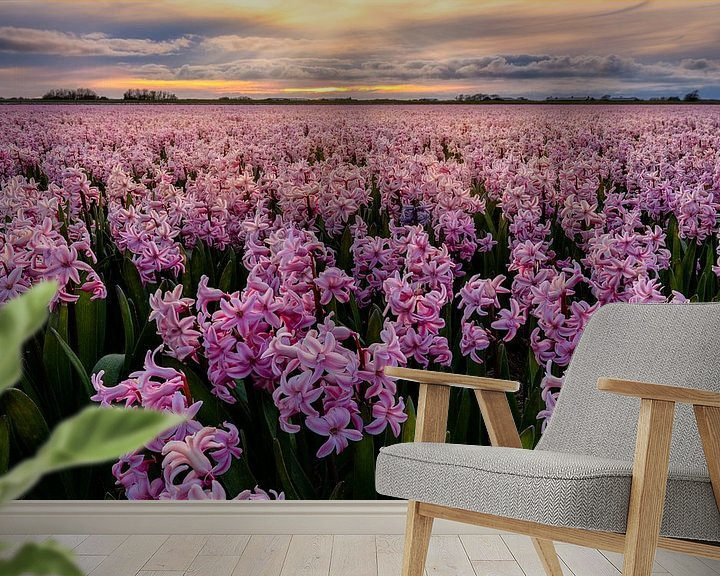 Beispiel fototapete: Pink carpet to the sunset von Costas Ganasos