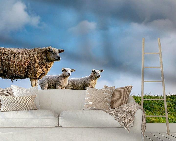 Impression: Moeder met dochters - lammetjes op Texel sur Texel360Fotografie Richard Heerschap